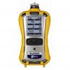 RAE Systems MultiRAE Multi-Gas Detector